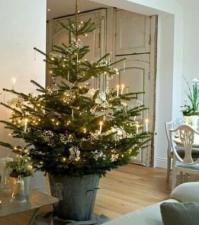 Simple White Christmas Tree