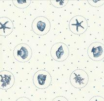 Sea Shells by Vanessa Arbuthnott