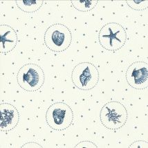 Sea Shells by Vanessa Arbuthnott