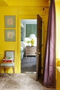 Bright yellow contrasts well with purple
