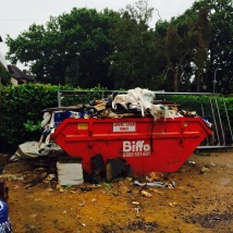 The 'missing' skip