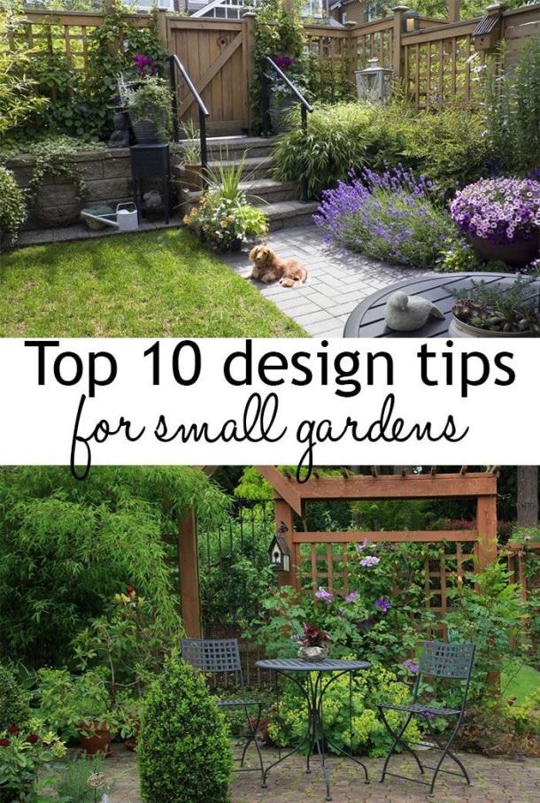 Design Tips by daviddomoney.com
