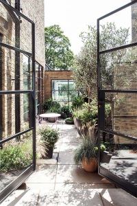 Low maintenance small courtyard garden